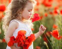 Нумерология ребенка, характер и особенности его воспитания
