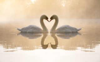 Коды любви в Нумерологии