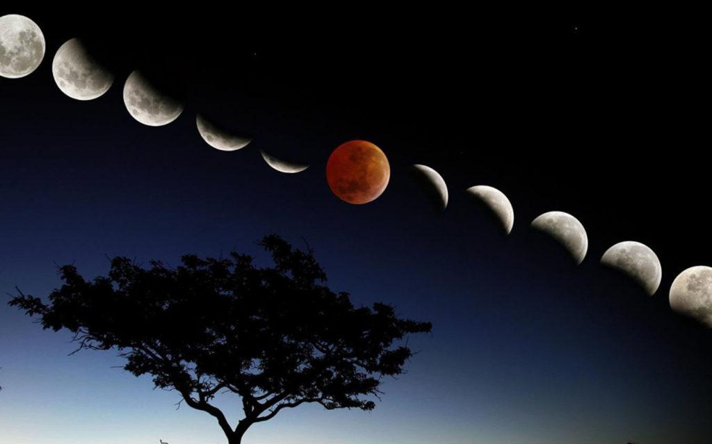 Взаимосвязь луны и вашего здоровья
