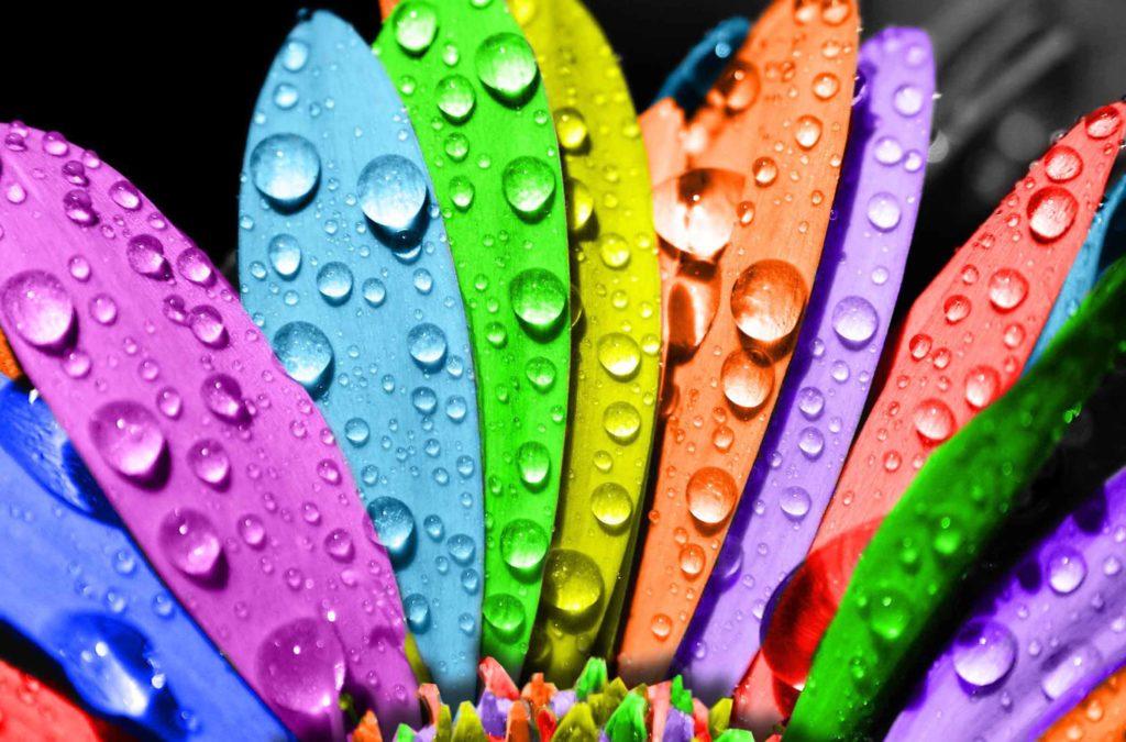 Счастливые и несчастливые цвета для вас по дате рождения