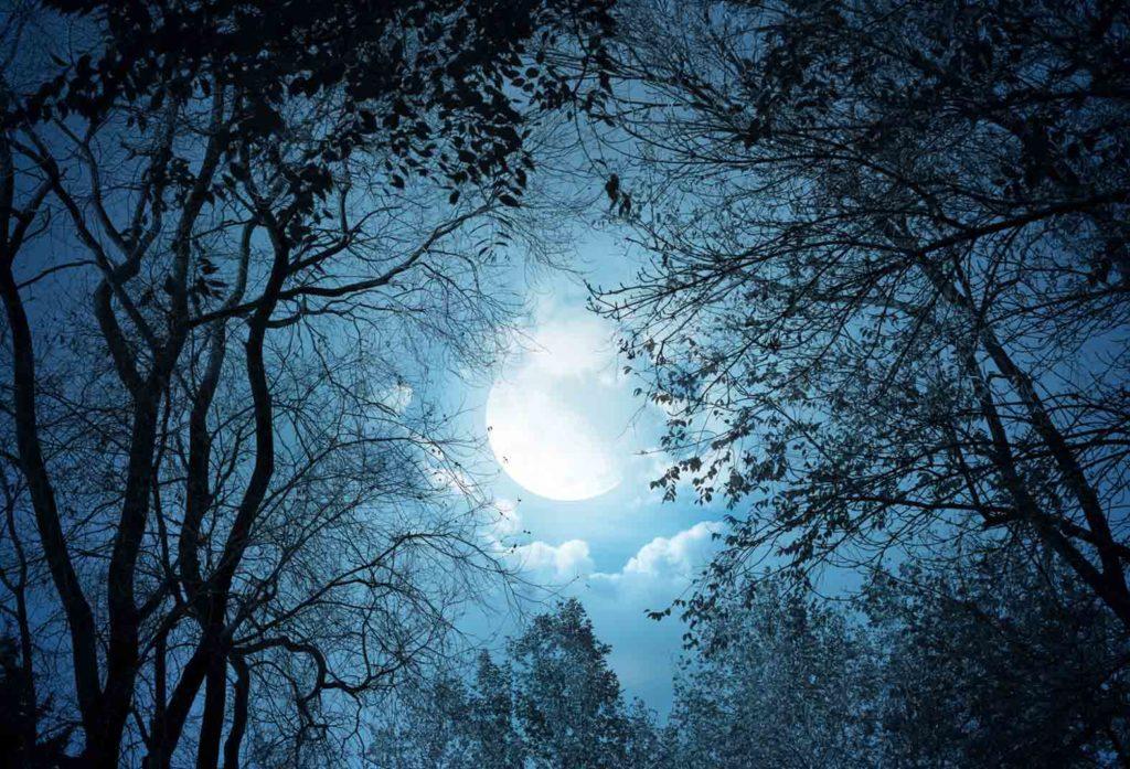 Луна помогает исполнять наши желания